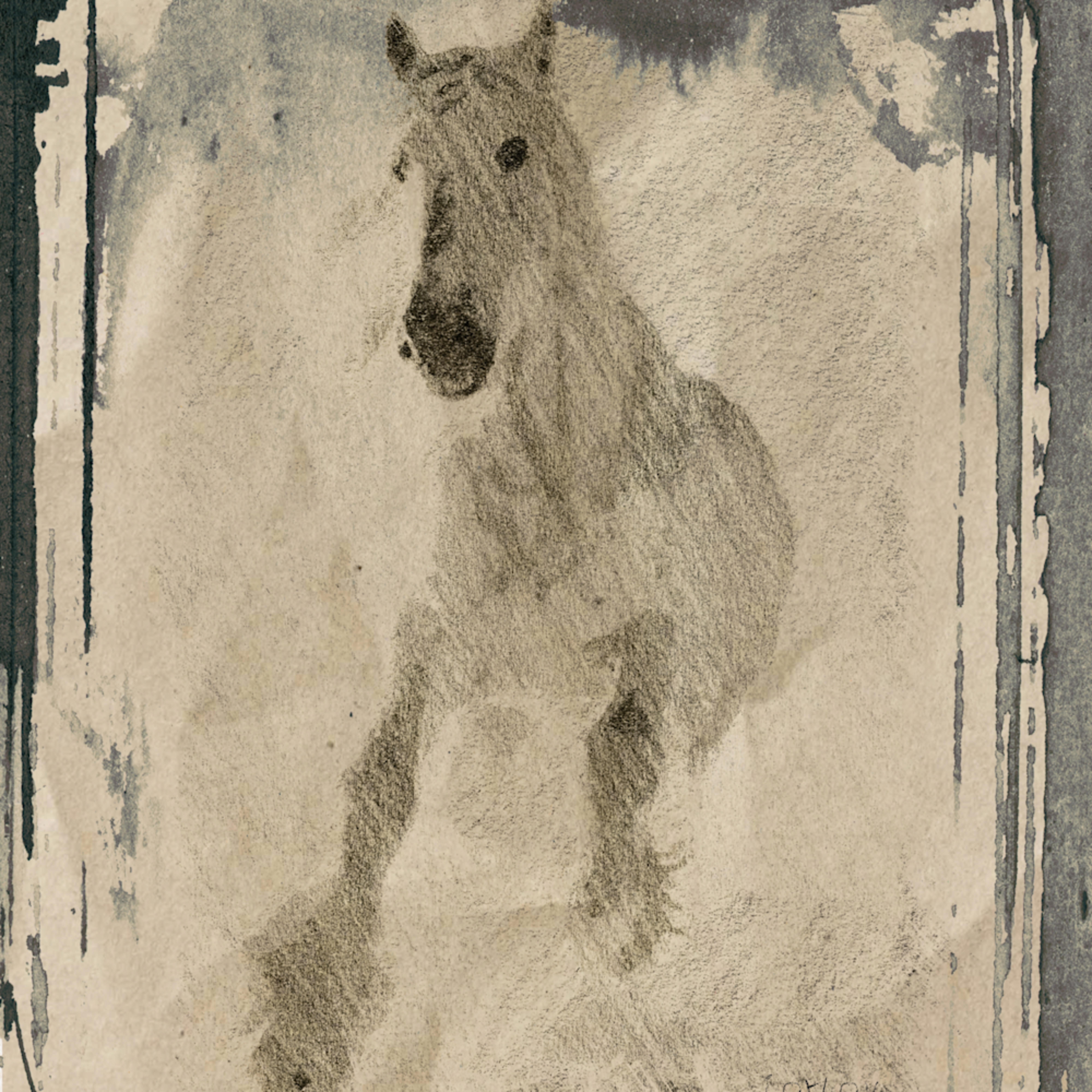 Orl 1781 white horse snzg0l