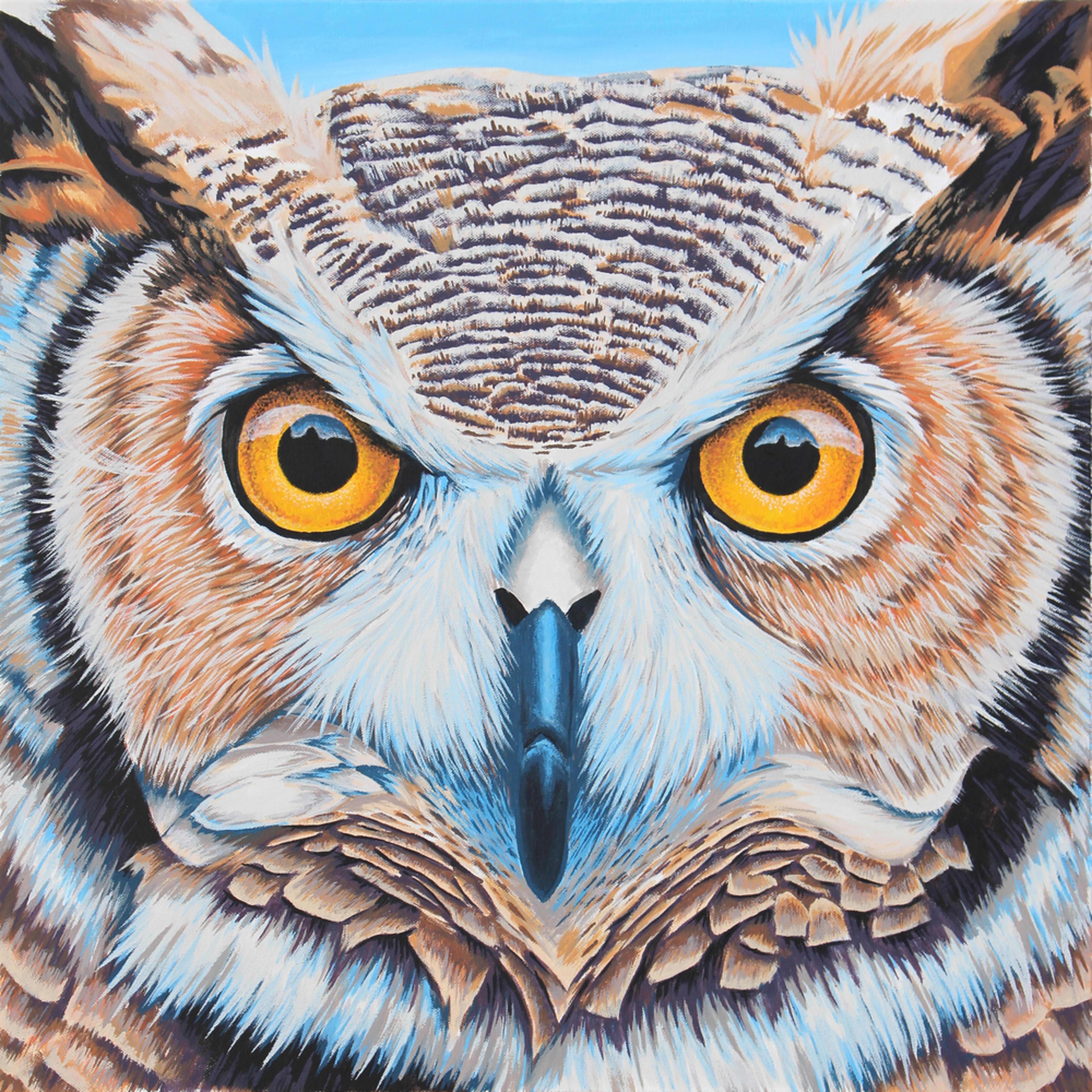 Owl large ksldrq