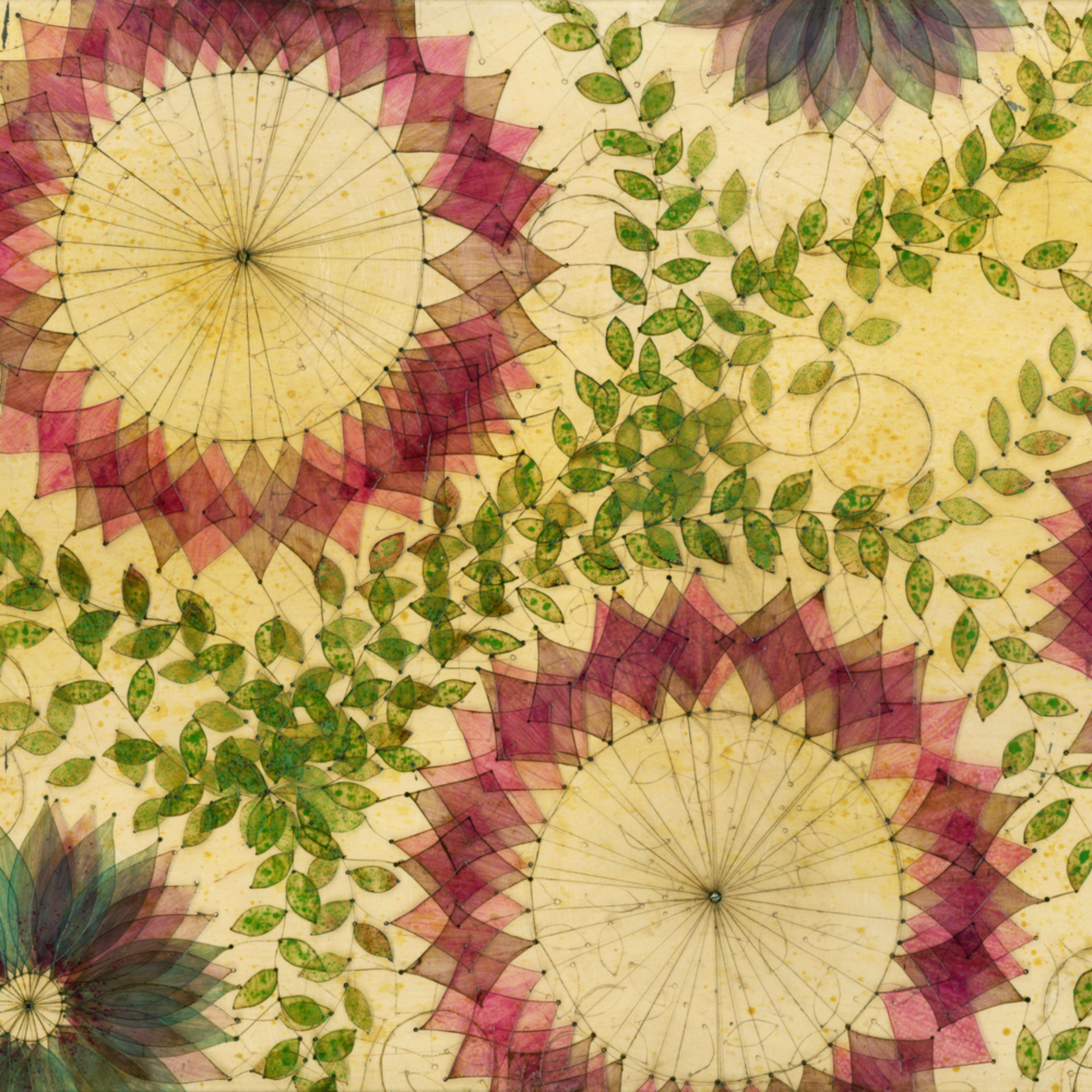 Violets sq5zin