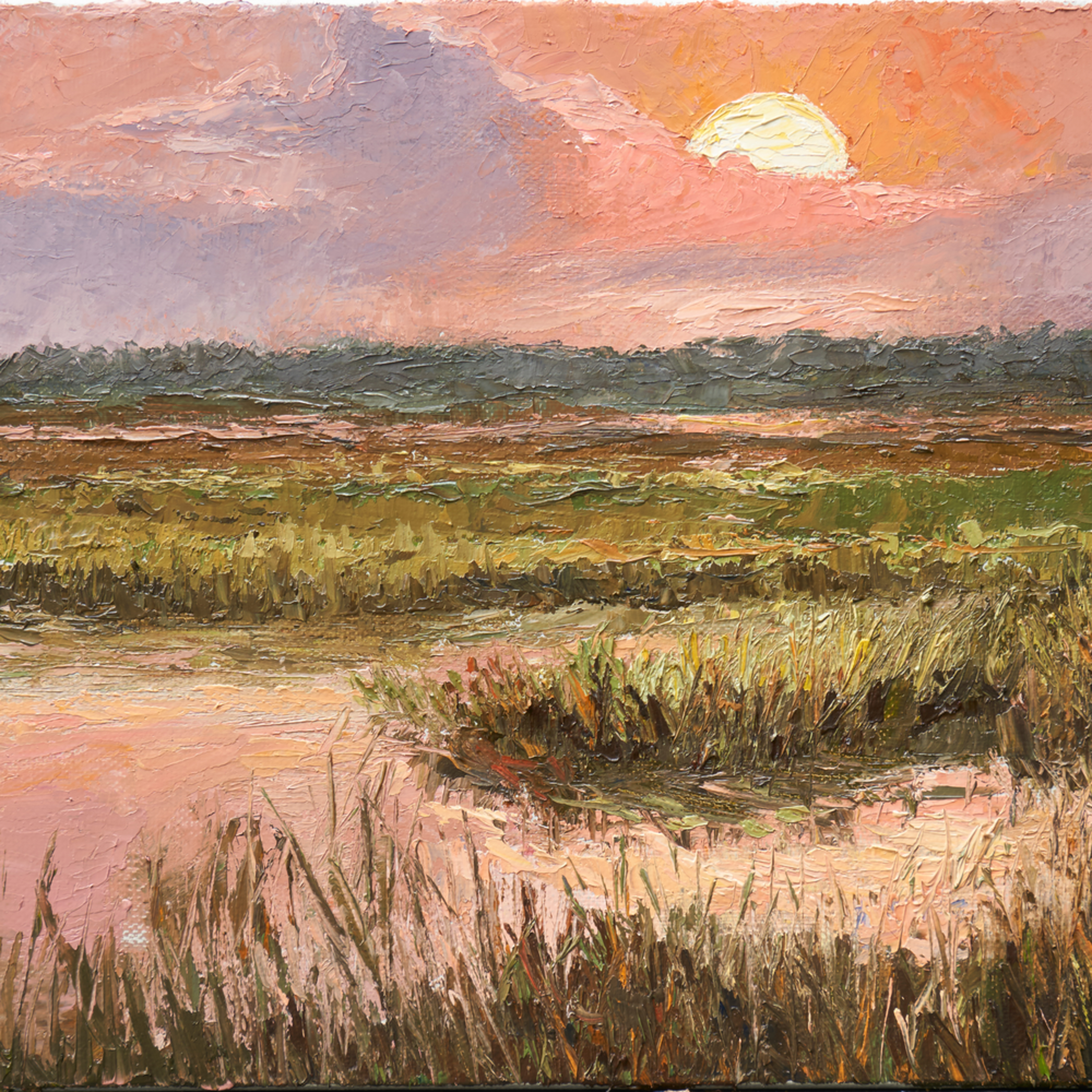 Sunset on the marsh xfob8m