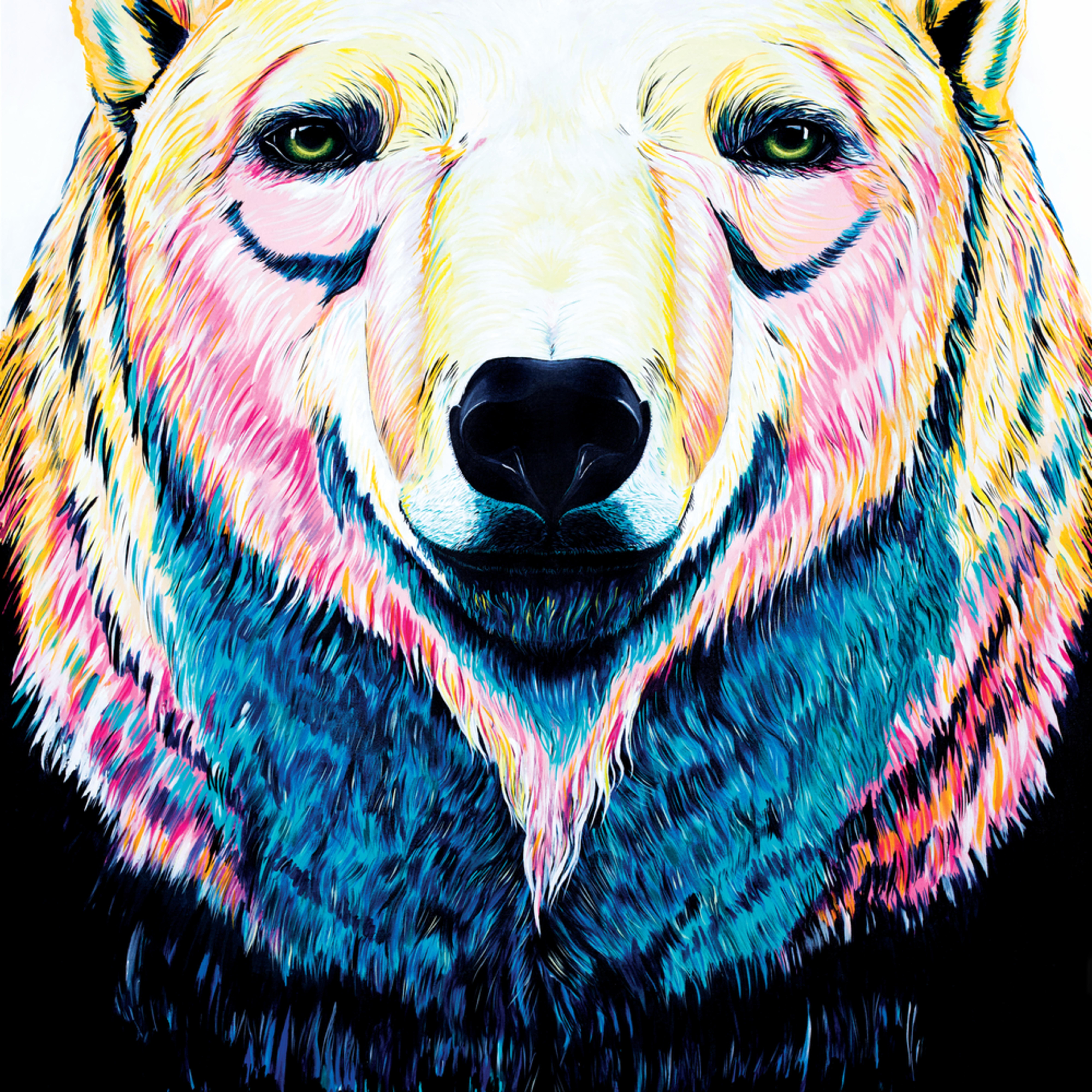 Polarbear zhtemn