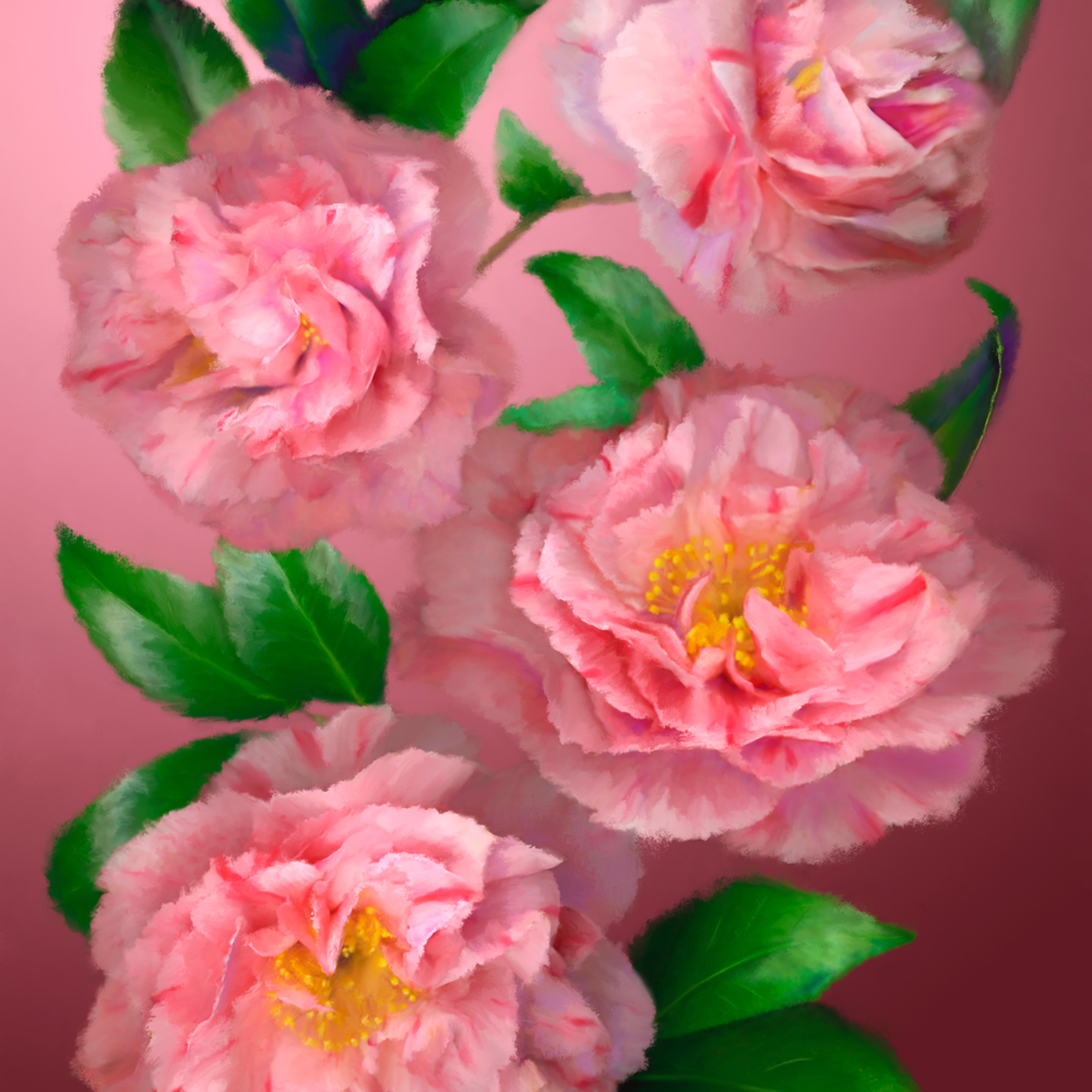 110602 ahern pink camellias 30x40x300 metal print hrdy7j