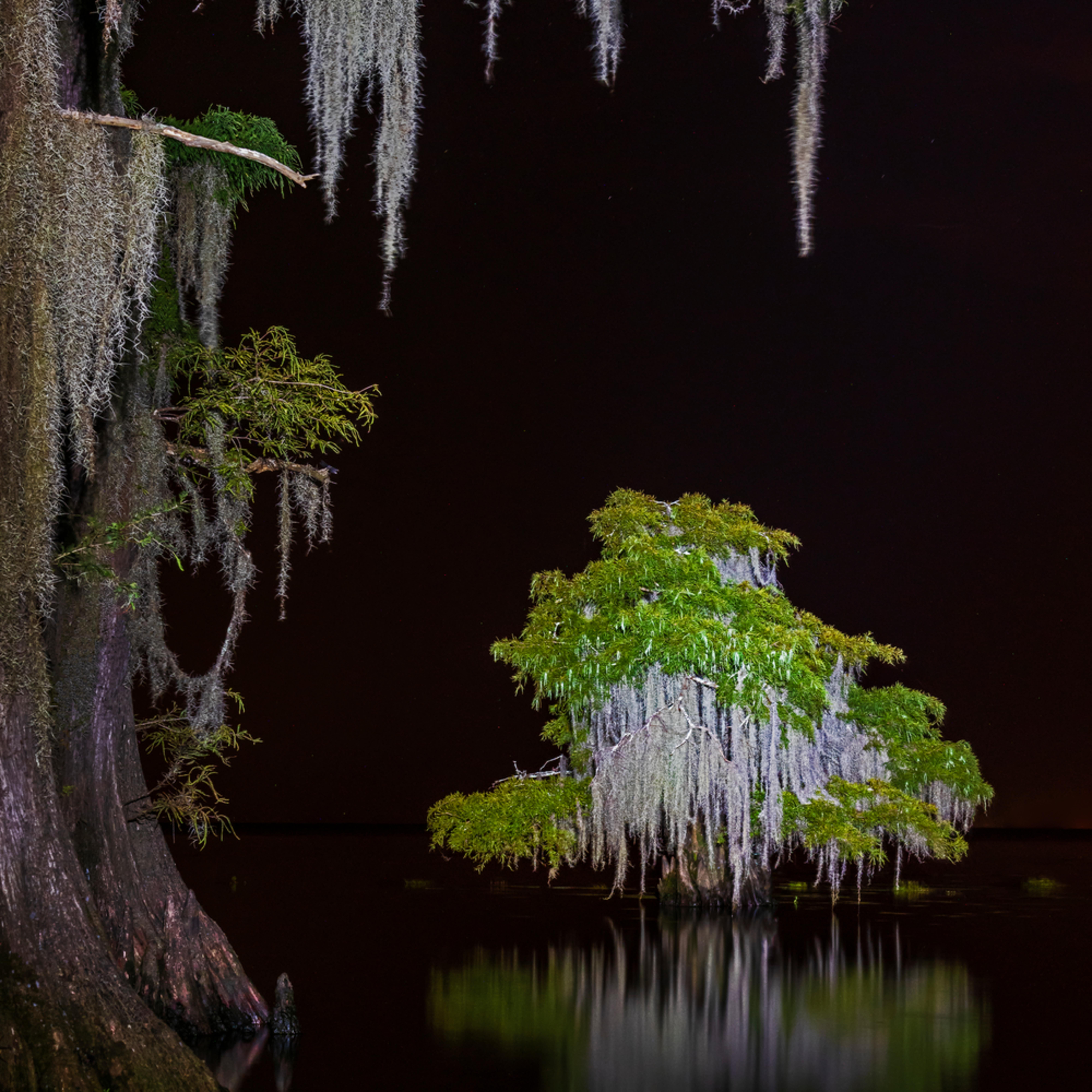 Andy crawford photography lake maurepas 004 b90ism