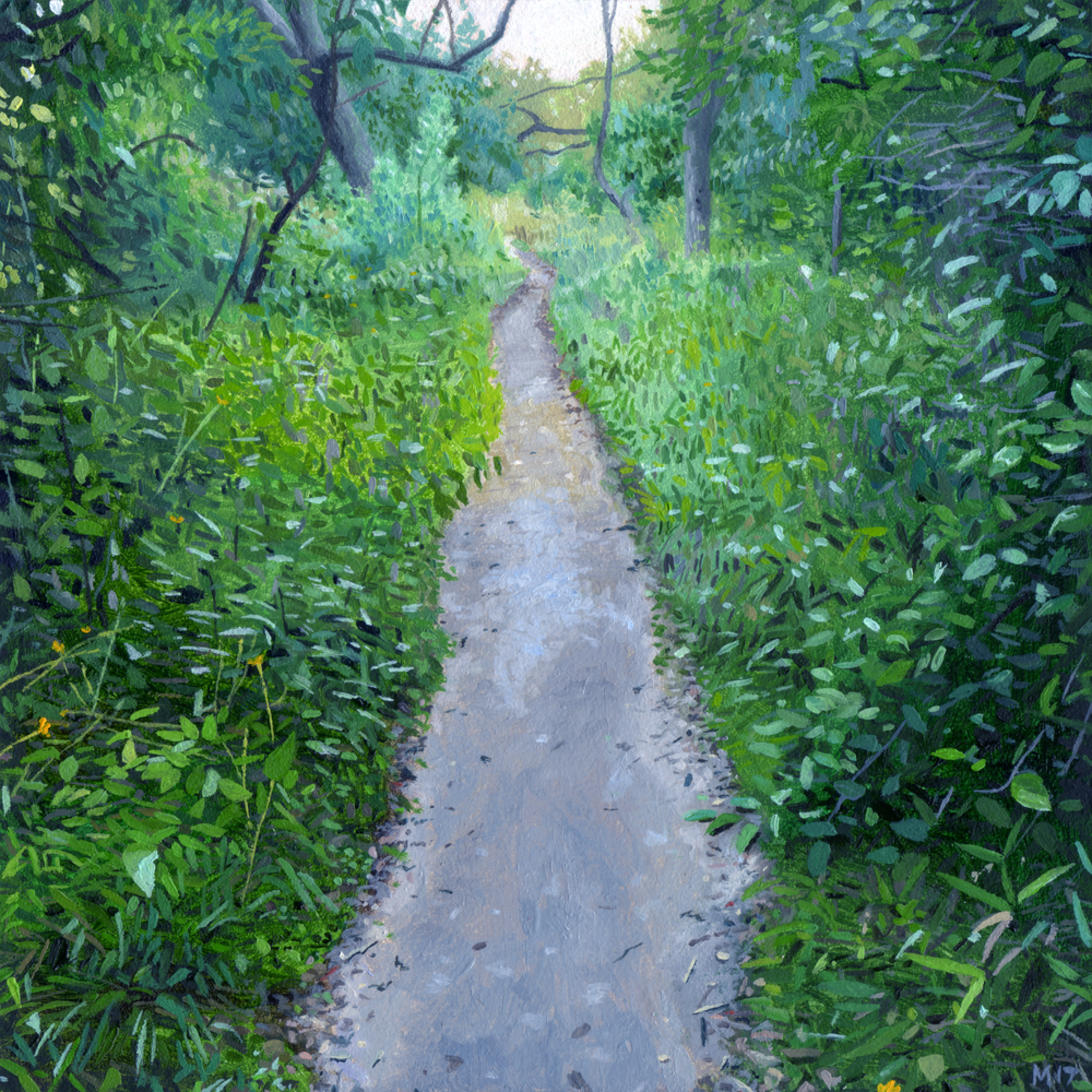 The path clean awfo7z