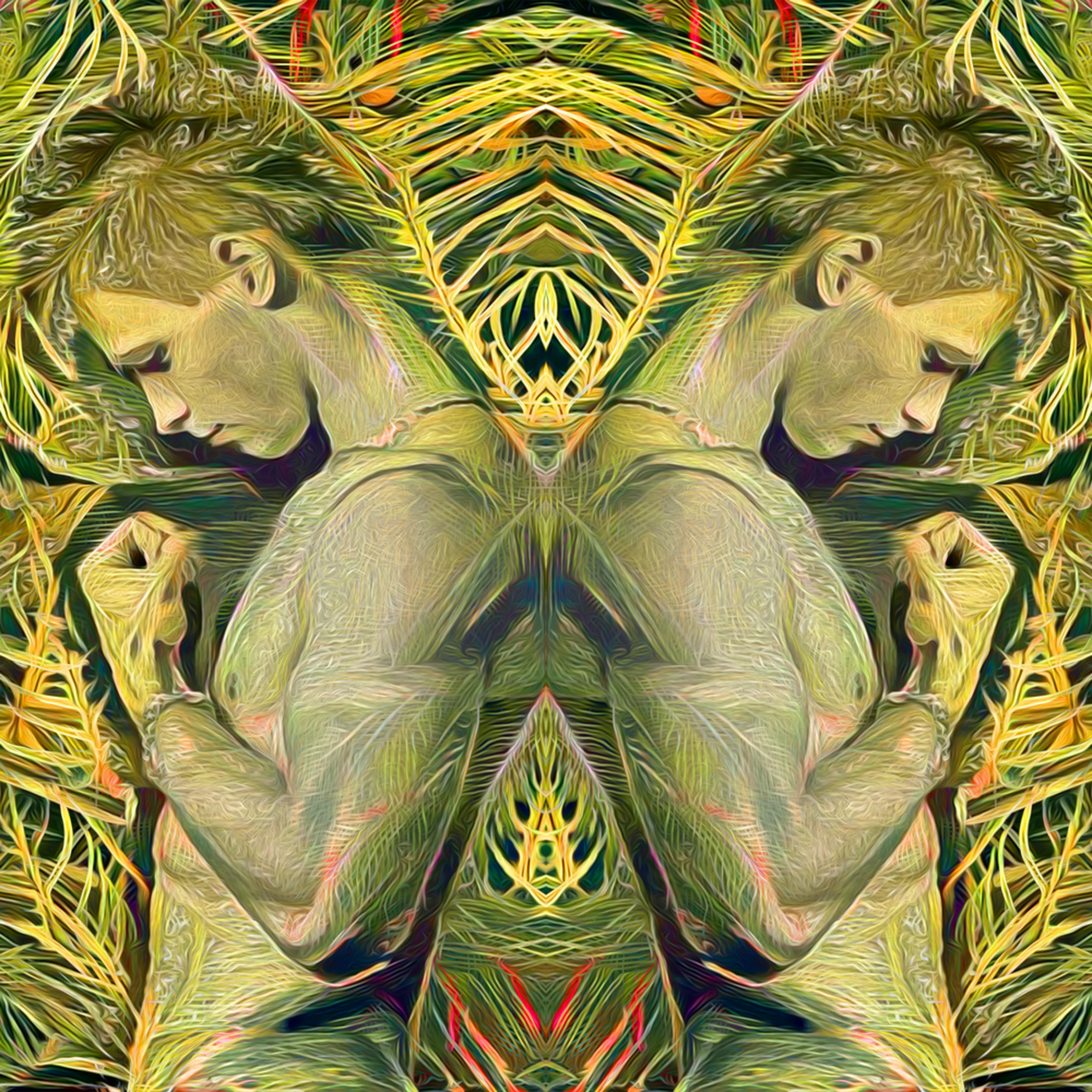 Palm boys kntyg8