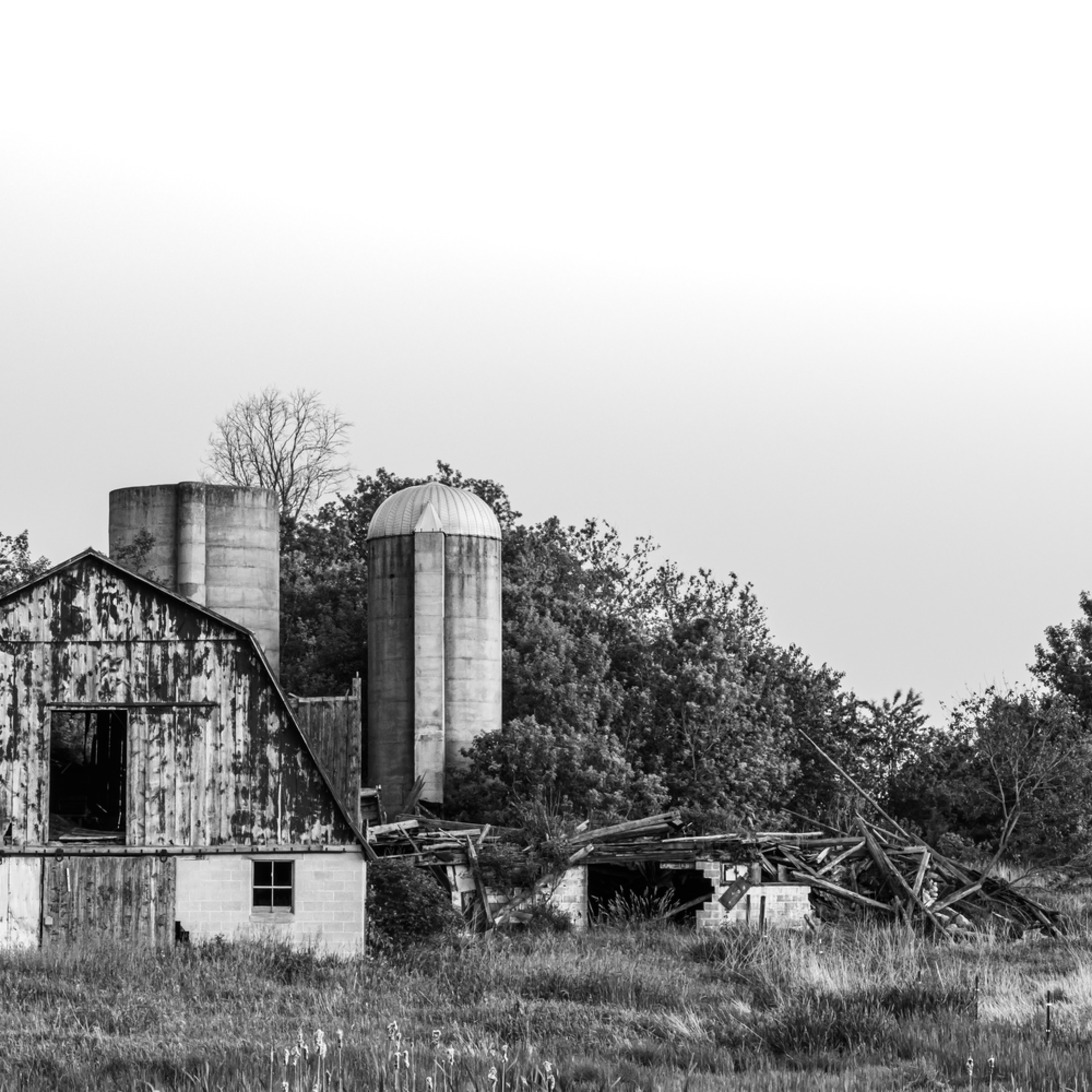 Balavictch barn bnw 1 ag5t96