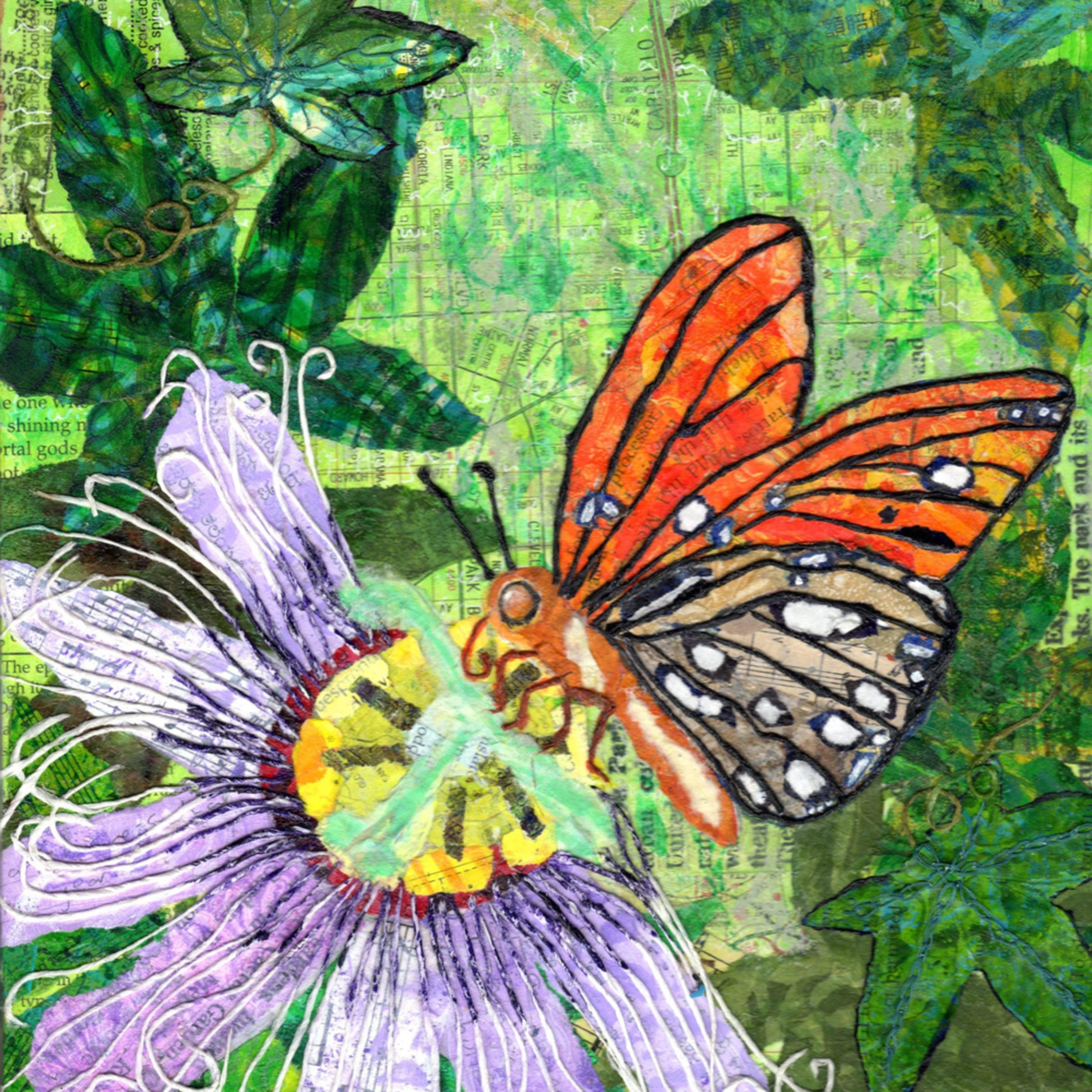 Butterflypassion 300 32x40 ga37vi