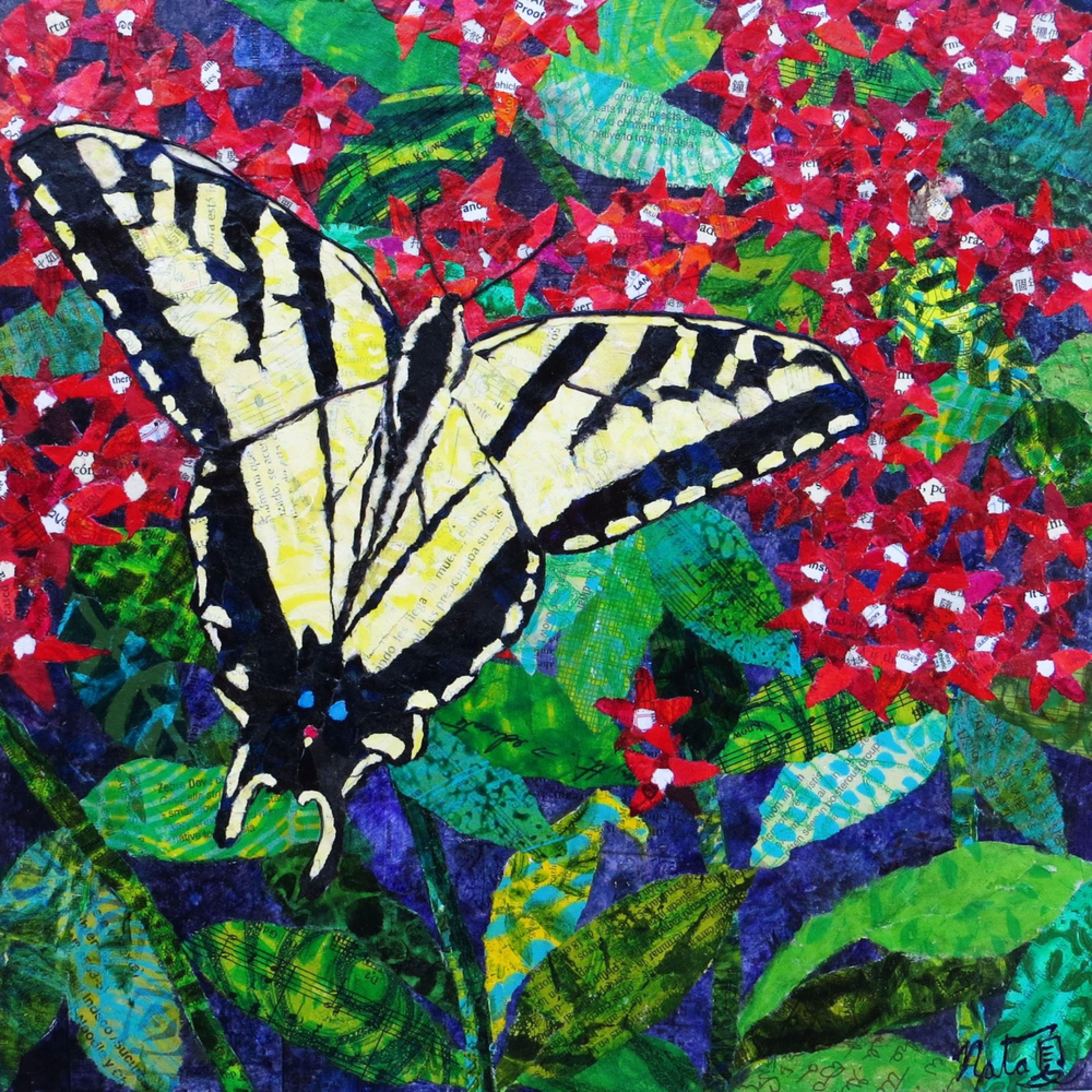 Catchatigerswallowtail 300dpi 40x40 lxod6o