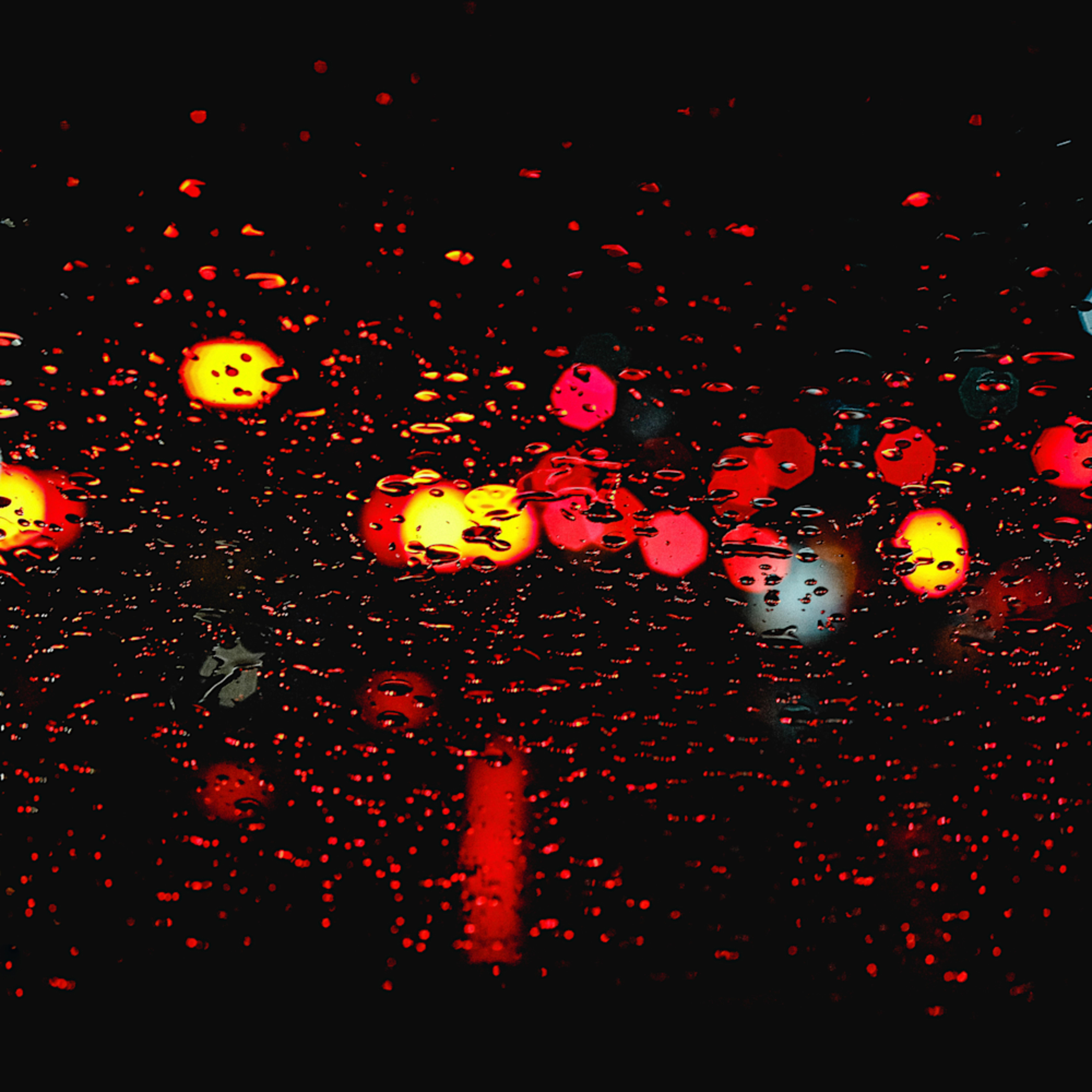 Dscf5645 2 red and yellow rain bi4tre