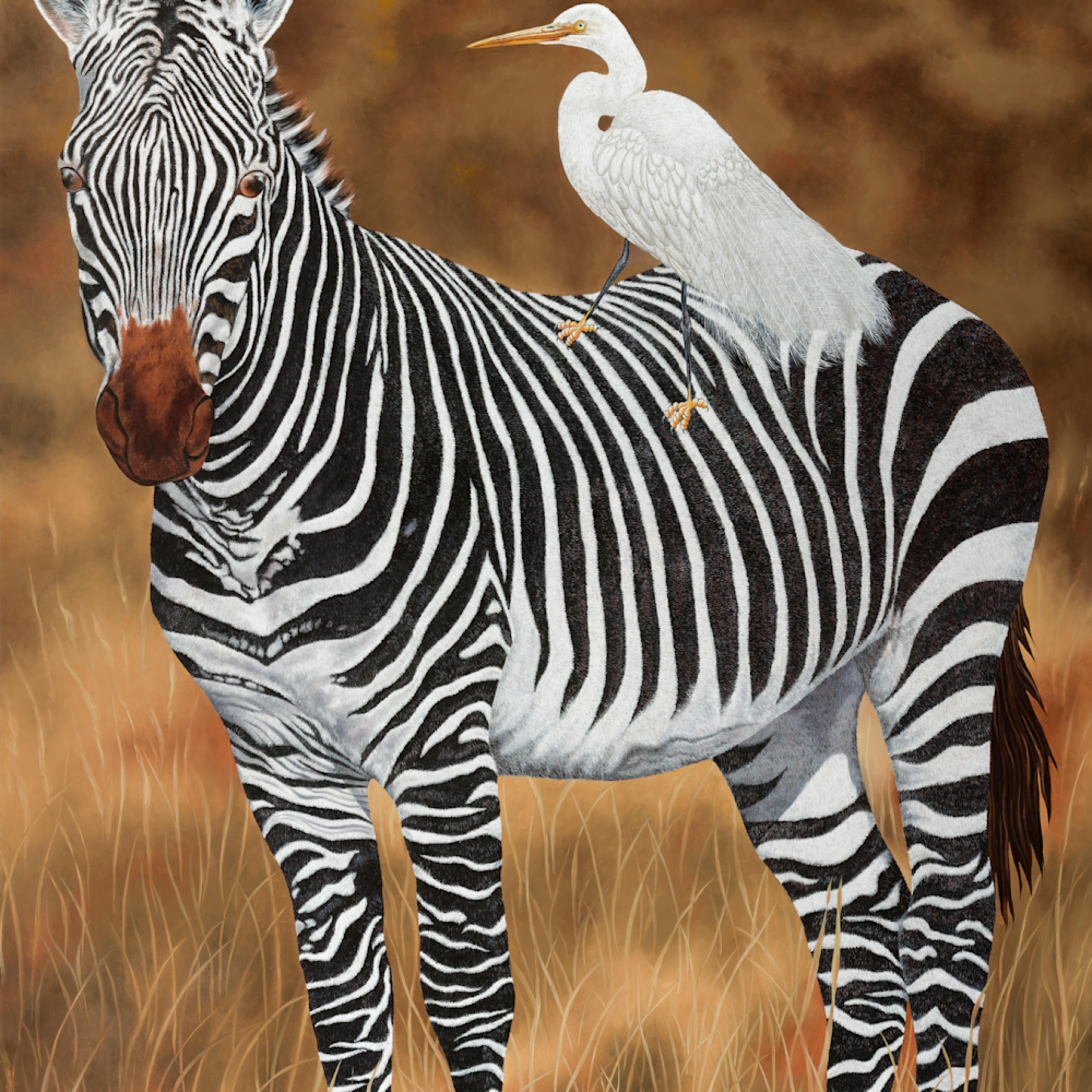 Zebra and egret stitched x3 sized 36 x 26 sharpenthe image12 2020 bfldjl