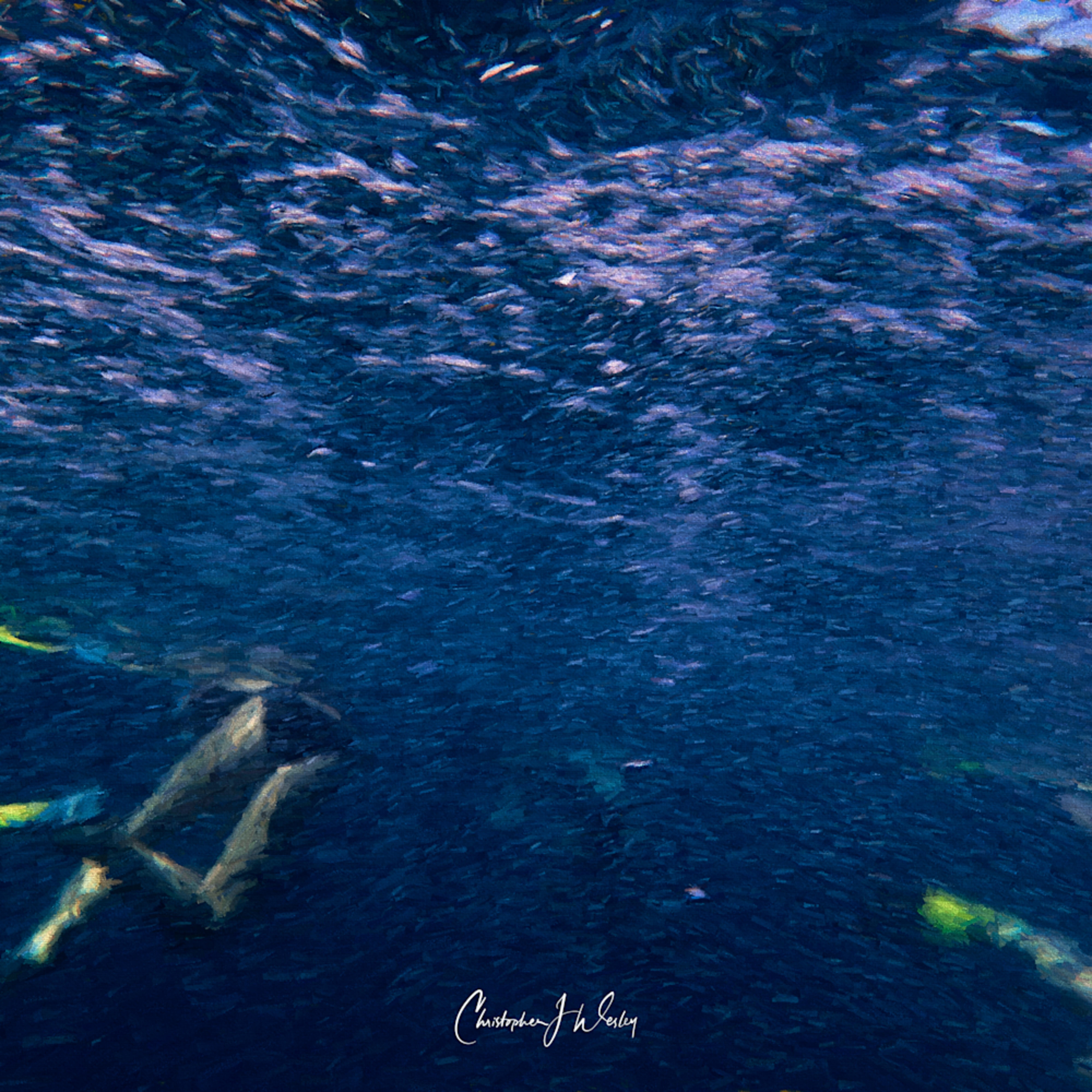 Sea horseplay fihxlv