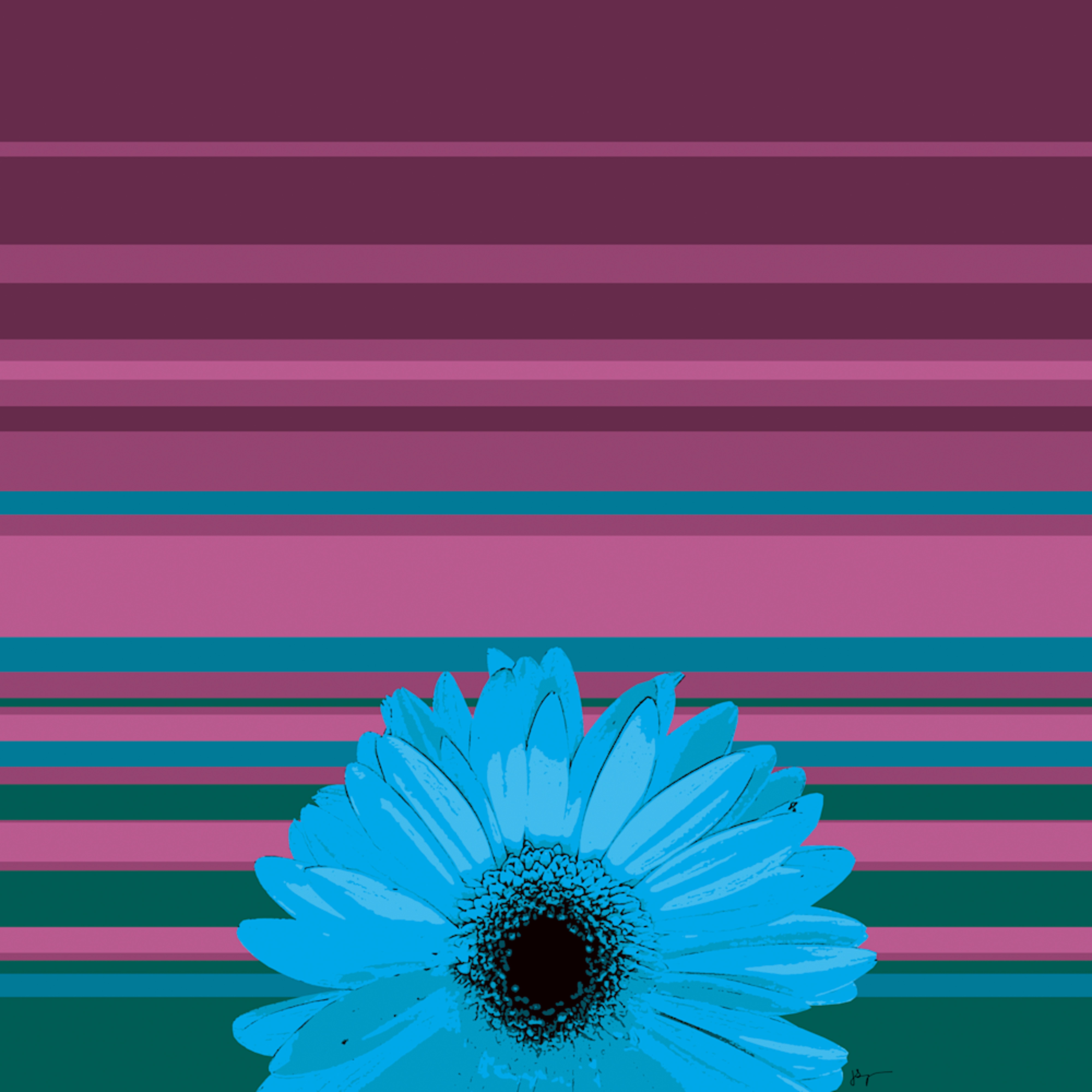 Sunshine daisy 03 copy hrhq85