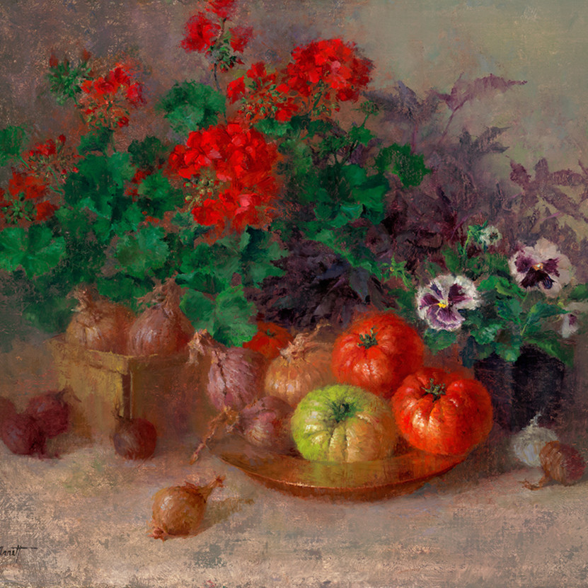 Heirloom tomatoes and geraniums gmf84o