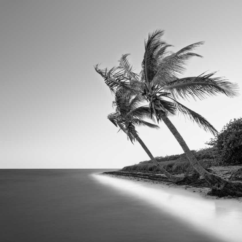 Bahia honda palms 16to9 rmrwnn