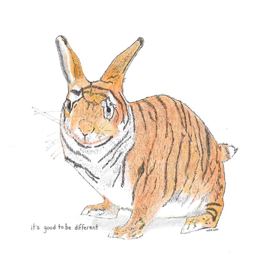 Mebane tiger bunny ratewx