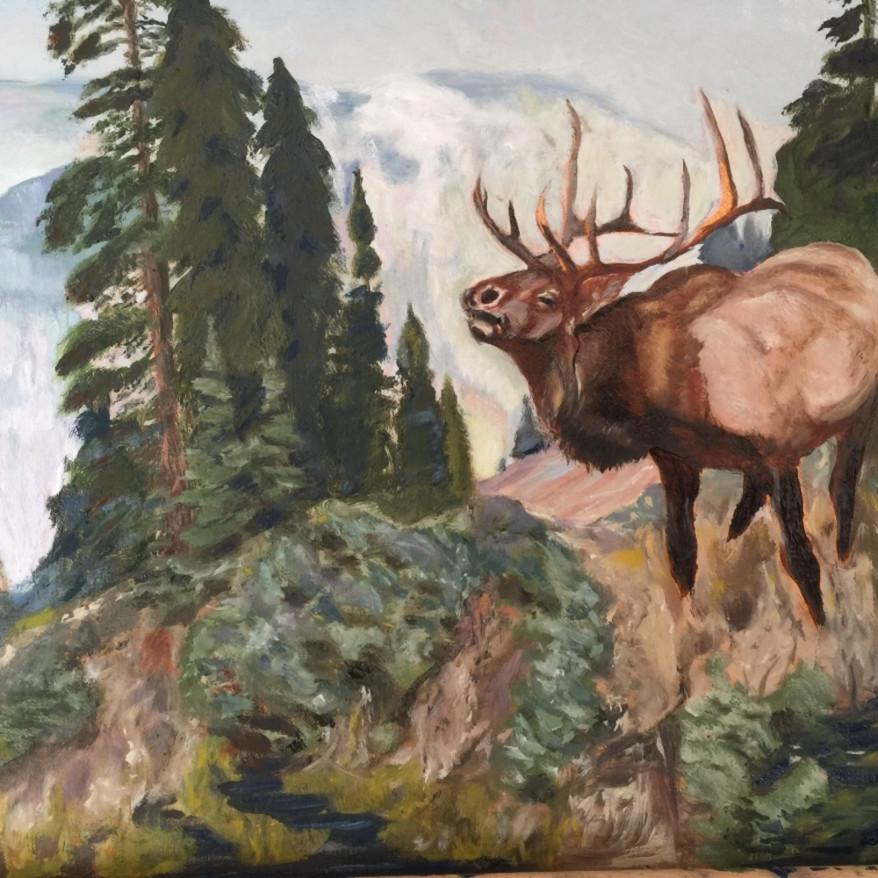Elk call odg3k7
