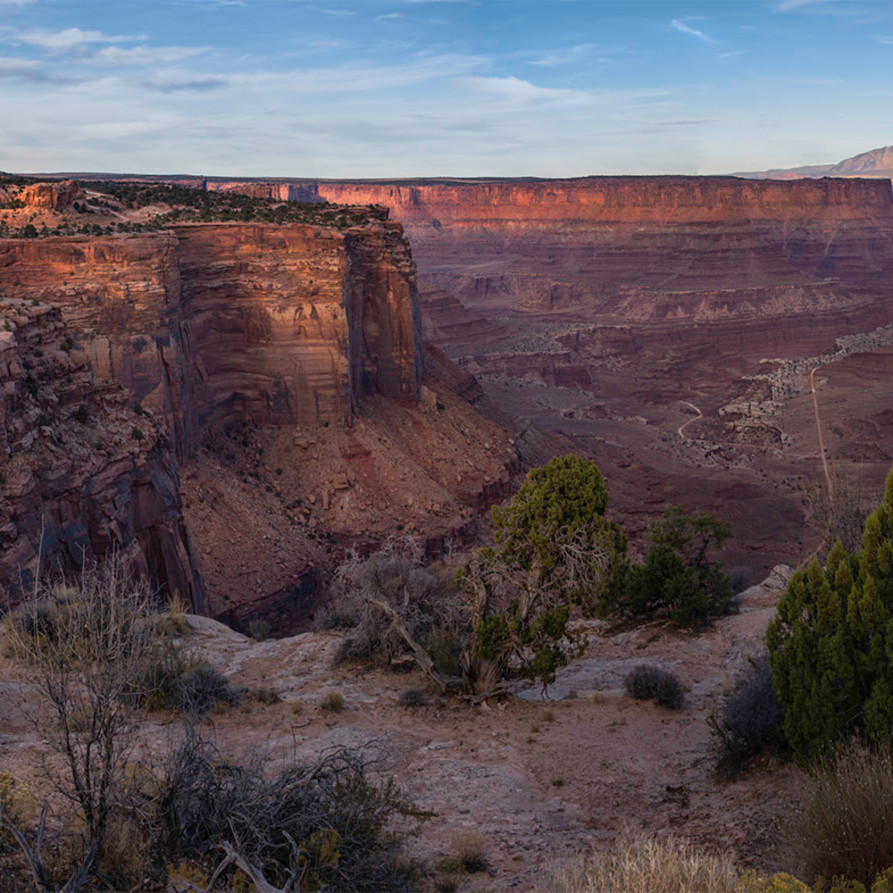 Asf100 shafercanyon scrub brush foreground alpenglow fileut16arches canyonlands bj2nrr