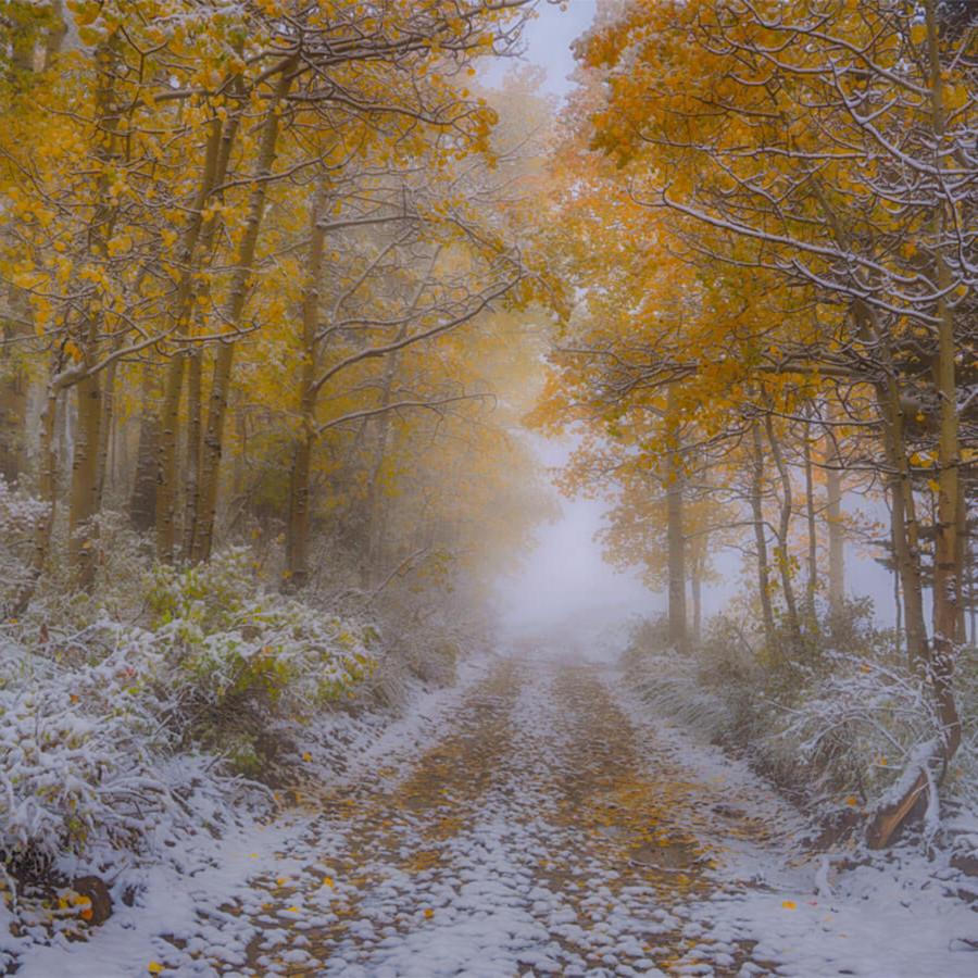 Near autumns end bvtaju