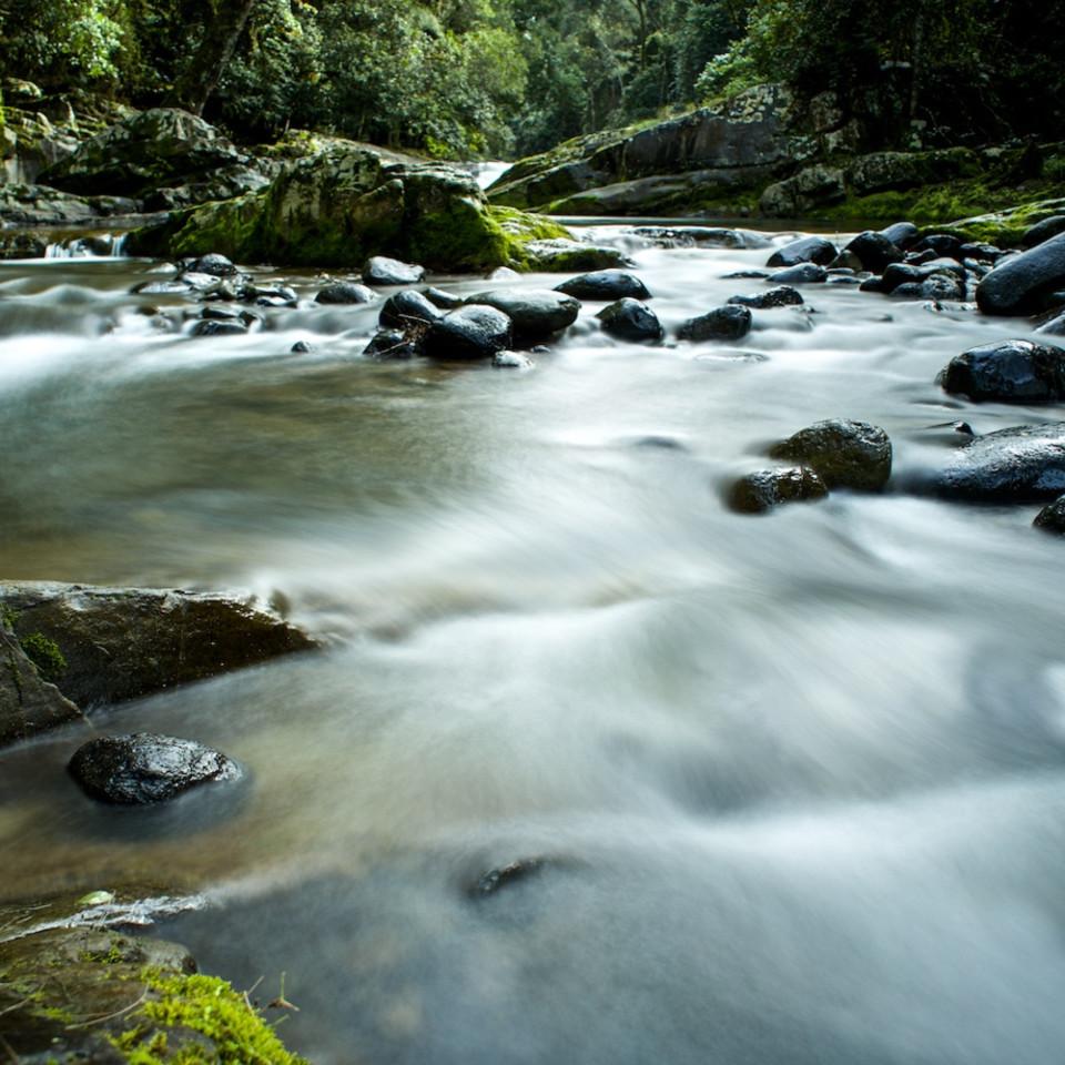 Ladies well barrington national park nsw australia waterfall ydwgkz