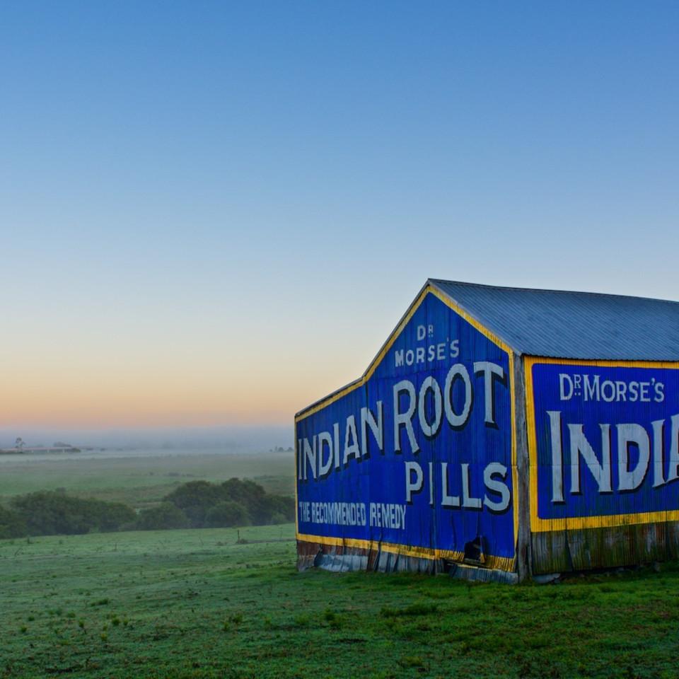 Dr morses indian root pills shed morpeth raworth maitland nsw australia km5zhf