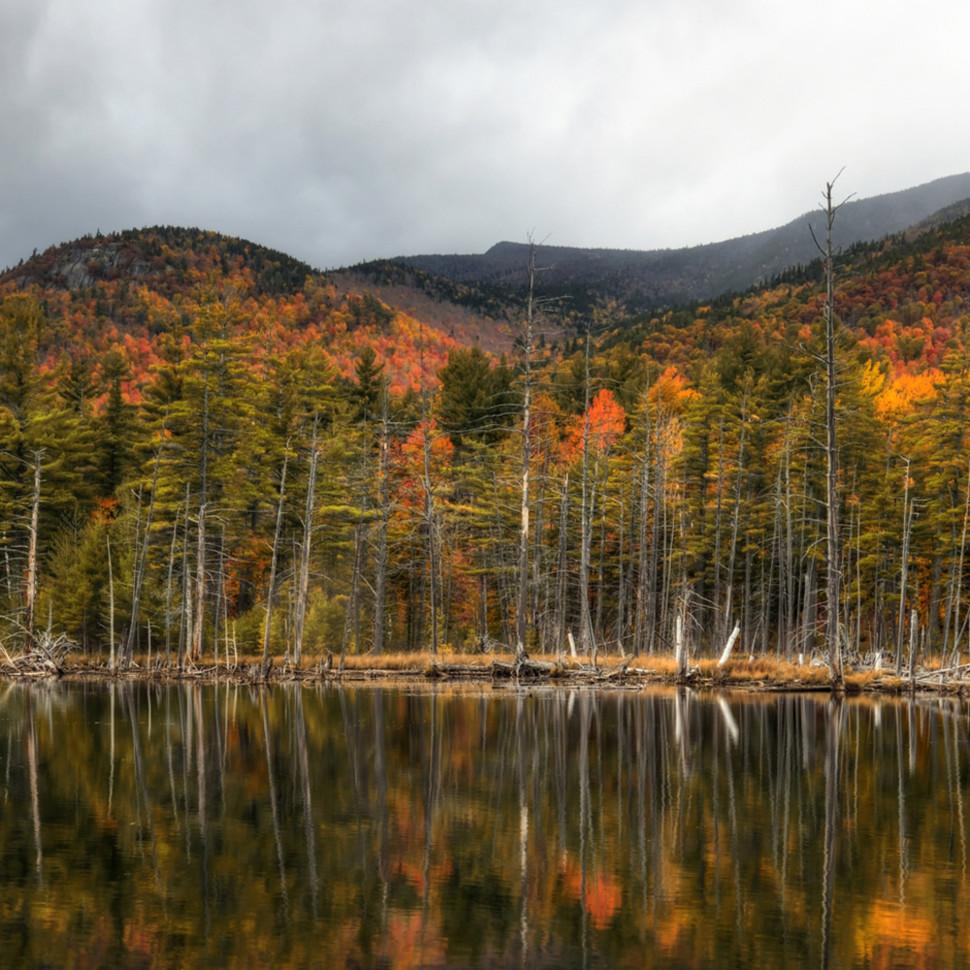 Adirondack vista   michael sandy lblefu