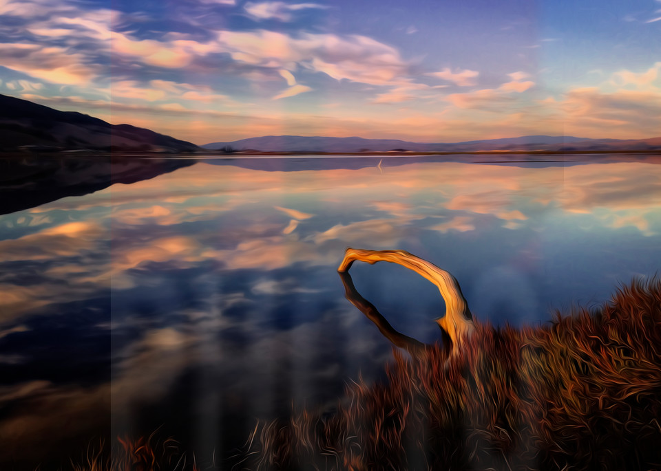 Beautiful Fine Art Paintings and Photographs by Vivian Lo – Picture of a peaceful scenery, originals and Prints for sale - VLo Photo Photograph of a Branch Over Water in watercolor