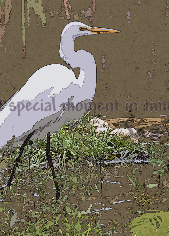 Everglades Stork photographic art painting for sale