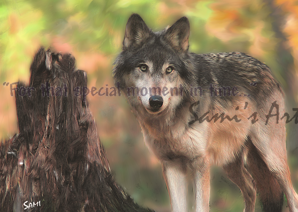 Keeley Up Close Wolf art painting for sale