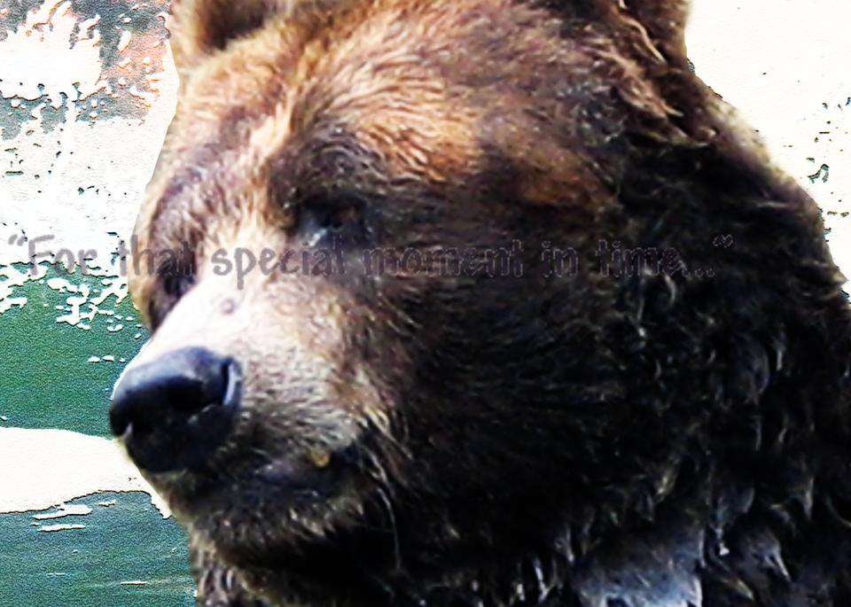 Grizzley Portrait