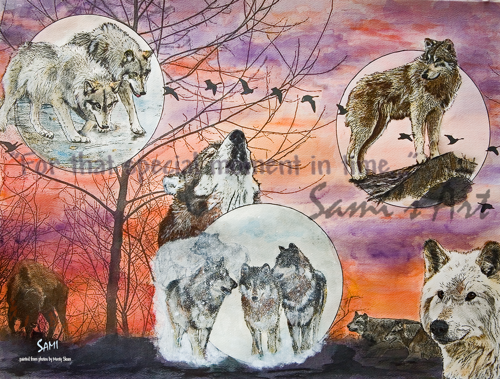 """Wolf Park In The Spotlight Art for Sale"""