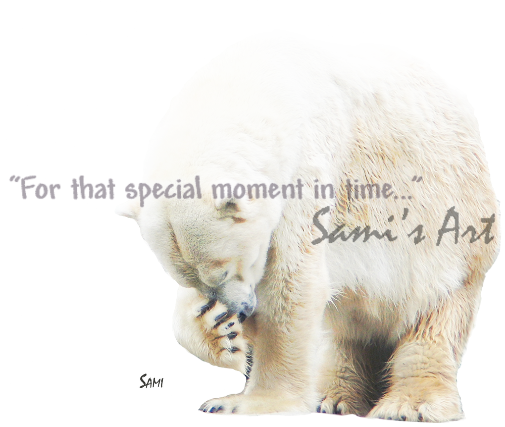 Shy Polar Bear Art for Sale