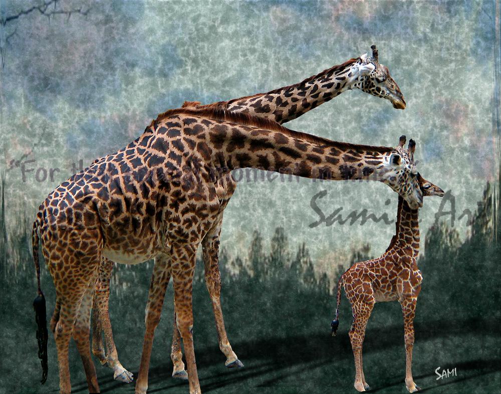 Giraffe Family Art for Sale