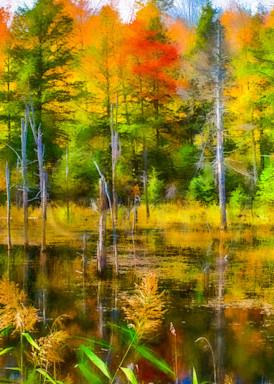 Vt Pond Reflections Photography Art | Gary Tobler Fine Art