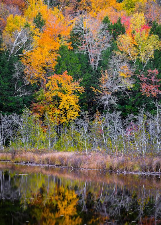 Vt Fall Colors Photography Art | Gary Tobler Fine Art