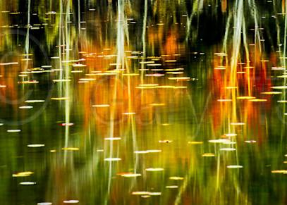 Vt Reflections Photography Art   Gary Tobler Fine Art