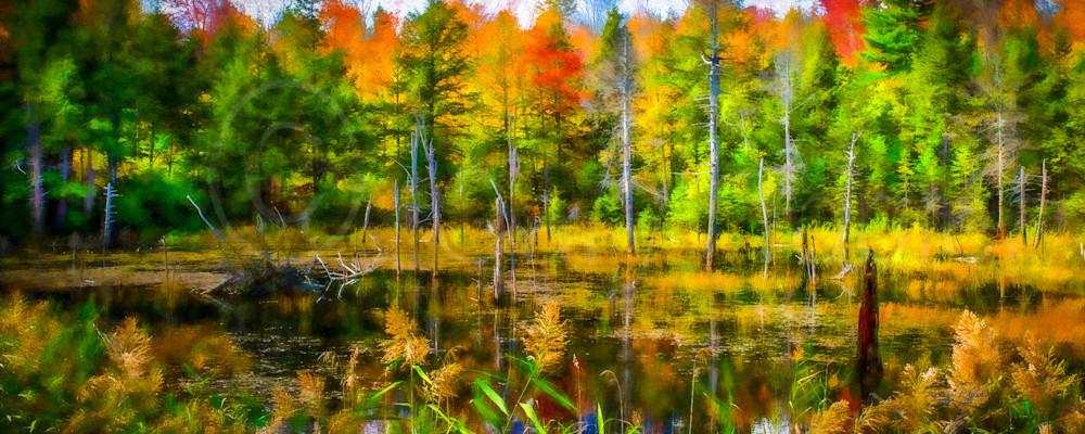 Vt Pond Reflections