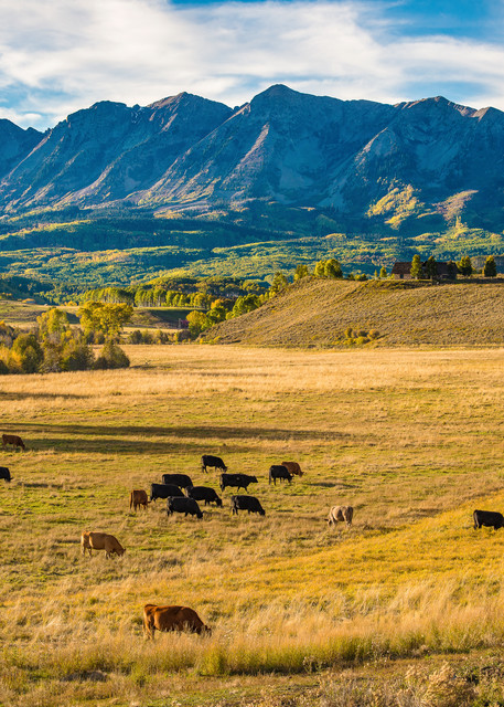 Late Afternoon Photo of Colorado Cattle Ranch Near Crested Butte