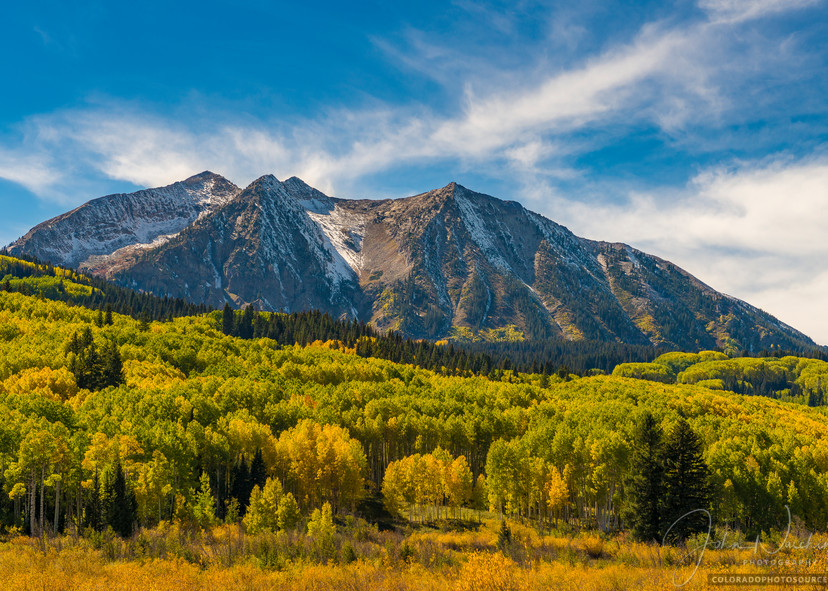 Photo of Kebler Pass Road Aspen Trees Crested Butte Colorado, East Beckwith Mountain