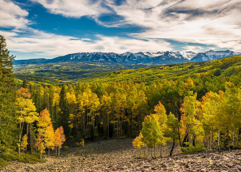 Photograph of The West Elk Mountains & Gold Aspen Trees Crested Butte Colorado
