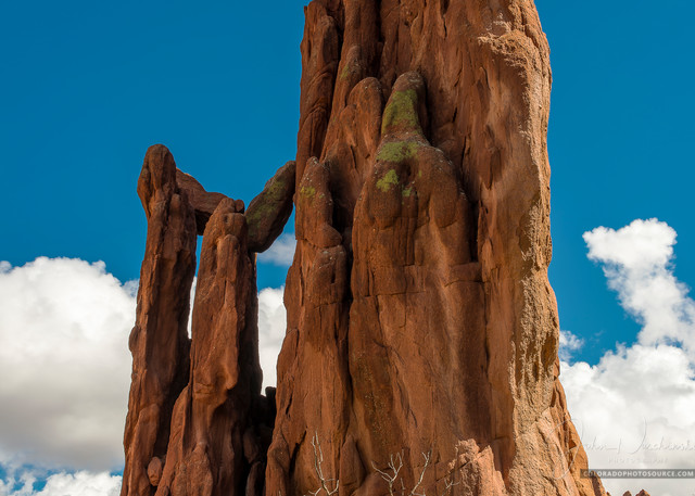 Vertical Photograph Garden of the Gods Colorado Springs CO