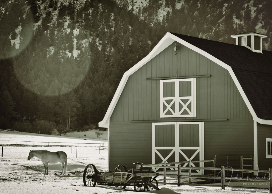 B&W Photo of Colorado Horse Barn White Horse in Winter Snow