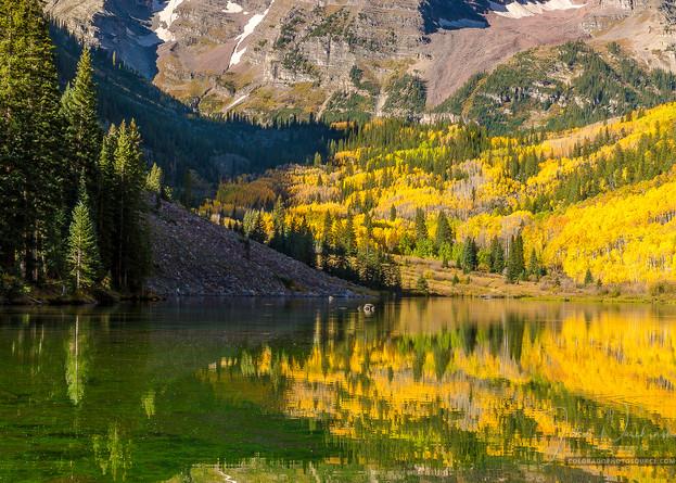 Aspen Maroon Bells Bright Fall Colors Vertical Photo