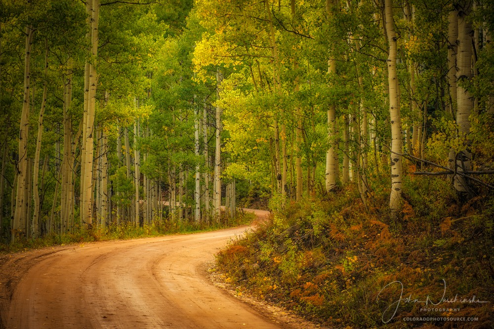 Aspen Trees & Fall Colors on Country Road in Crested Butte Colorado