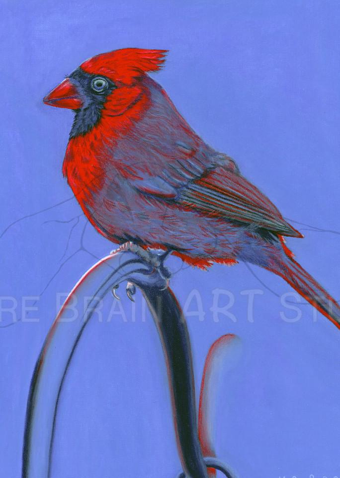 Cardinal Blues