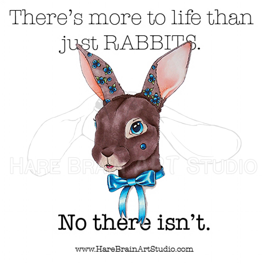 Rabbits Are My Life