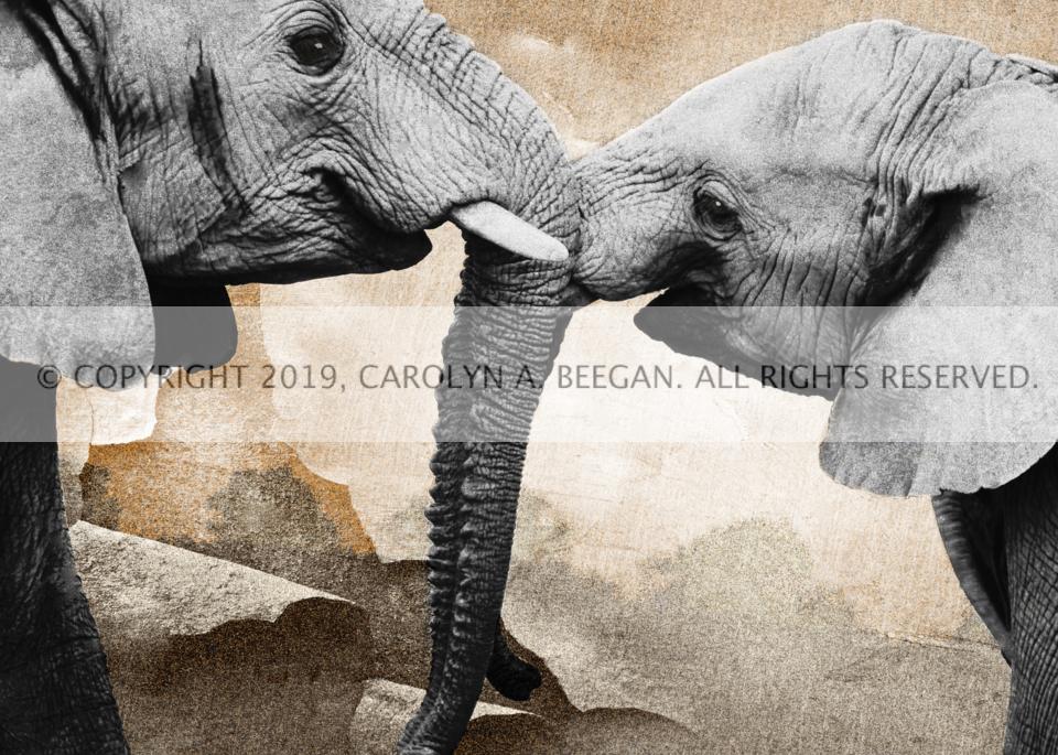 At Play in Gondwana No. 1, 2019, by artist Carolyn A. Beegan