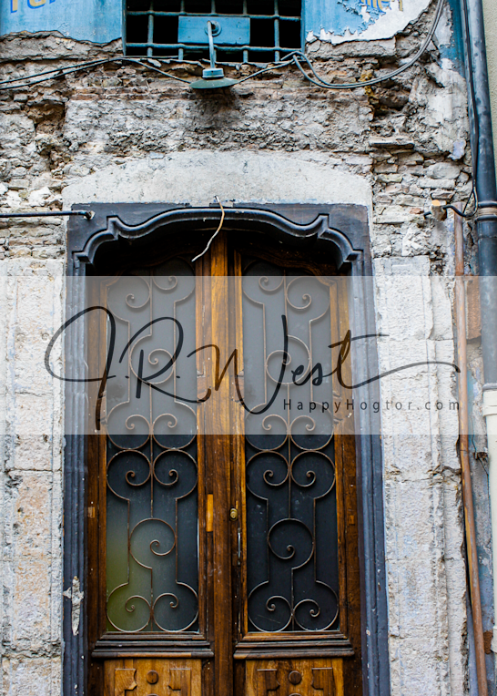 Blue Fruits Door Photography Art | Happy Hogtor Photography