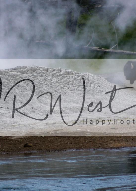 Bison Sauna Photography Art | Happy Hogtor Photography