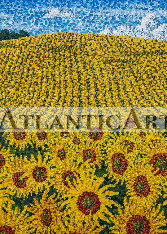 Field of Sunflowers Print
