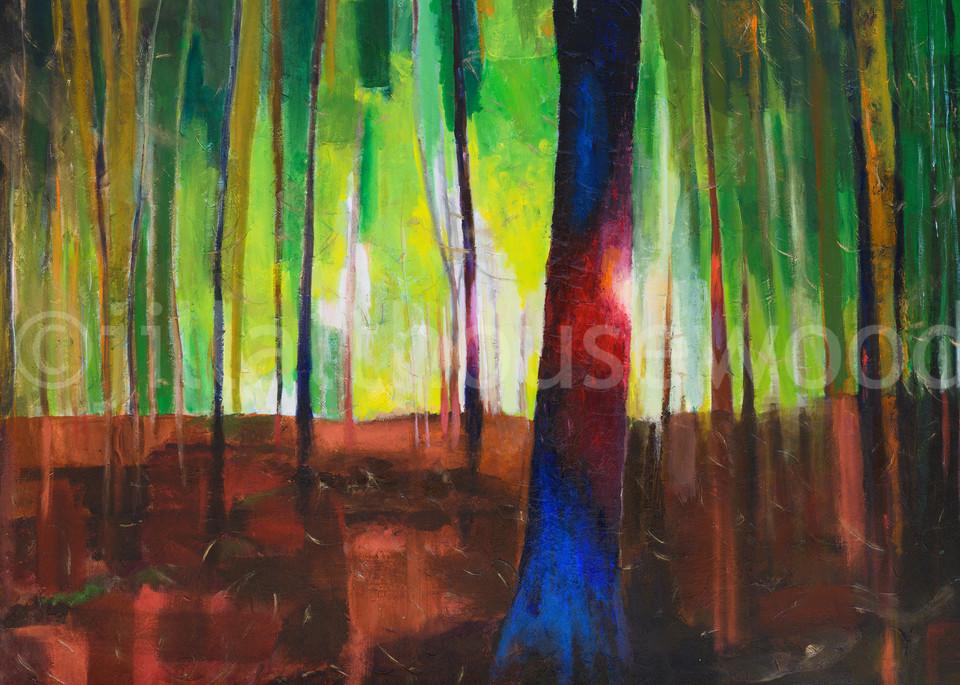 Solstice Art   jillalthousewood